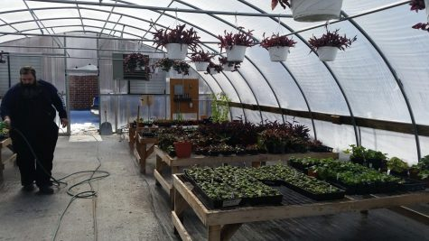 Greenhouse Sale for a Good Cause