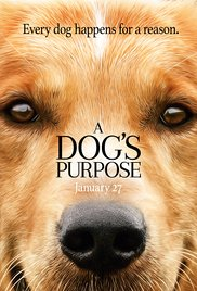 """What is """"A Dog's Purpose?"""""""