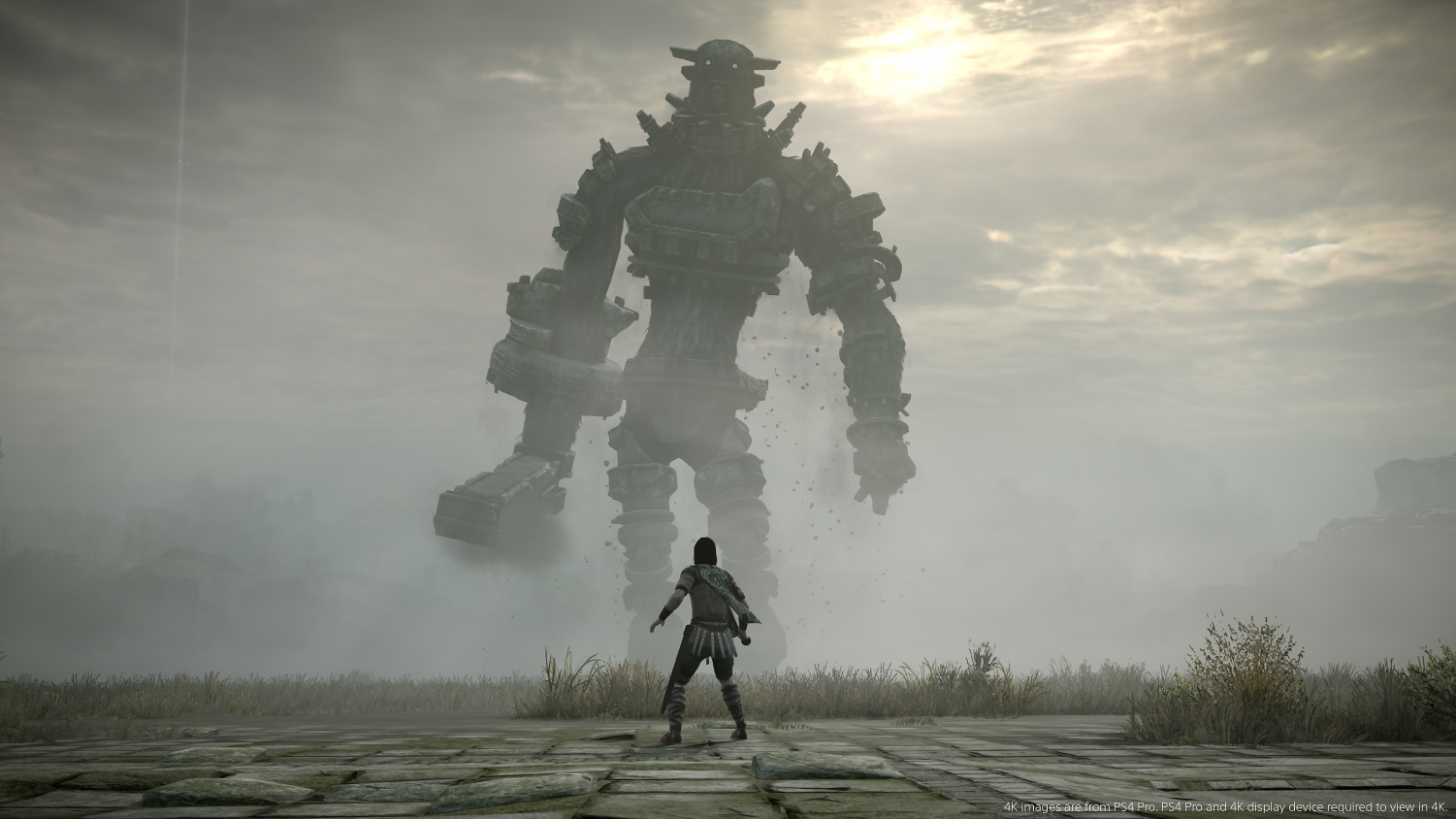 Shadow of the Colossus gameplay. Photo courtesy of Playstation under Creative Commons License
