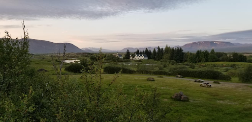 The+field+near+Scales%27+home+in+Iceland.+Photo+courtesy+of+Runa+Scales.