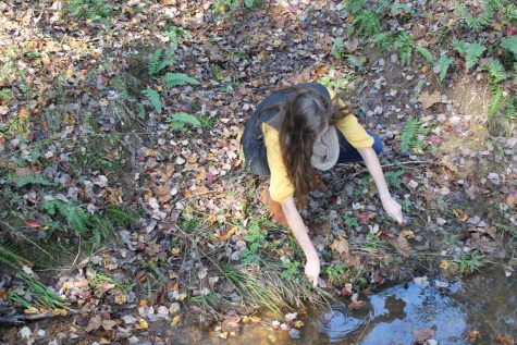 Explore the Environment with FCHS Envirothon