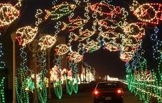 Virginia, Virginia Beach, Atlantic shore, Oceanfront Holiday Lights Display, boardwalk drive-through event.